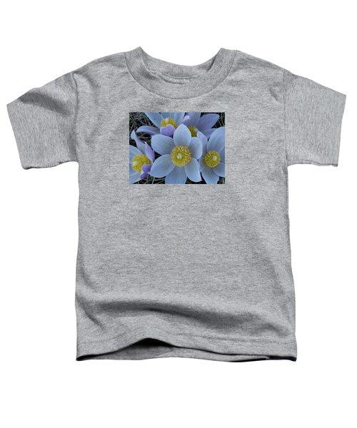 Crocus Blossoms Toddler T-Shirt