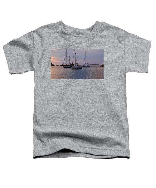 Cruise Liner Passing Toddler T-Shirt