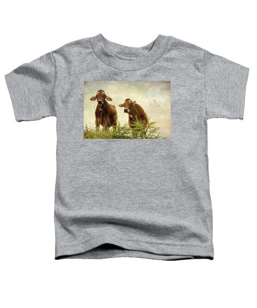 Curious Cows Toddler T-Shirt