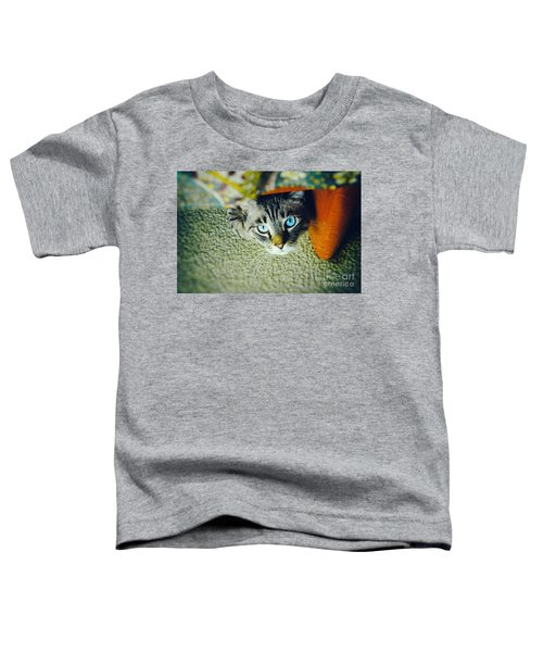 Toddler T-Shirt featuring the photograph Curious Kitty by Silvia Ganora