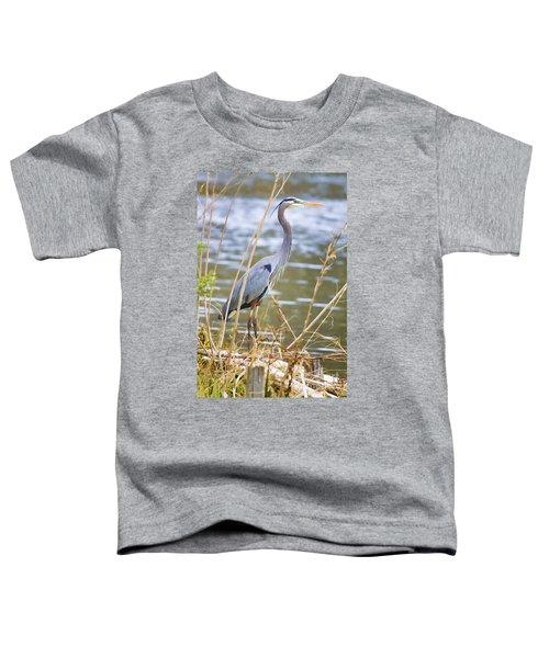 De Leon Springs Blue Toddler T-Shirt
