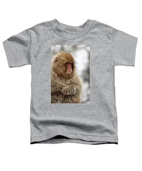 Deep In Thought Toddler T-Shirt