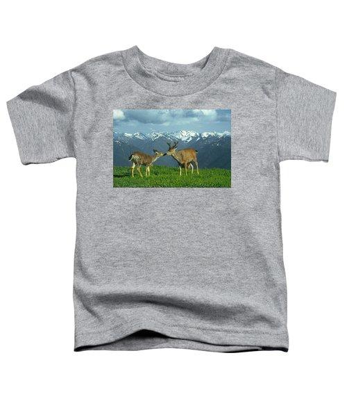Ma-181-deer In Love  Toddler T-Shirt