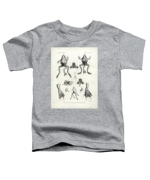 Deformed Frogs - Historic Toddler T-Shirt