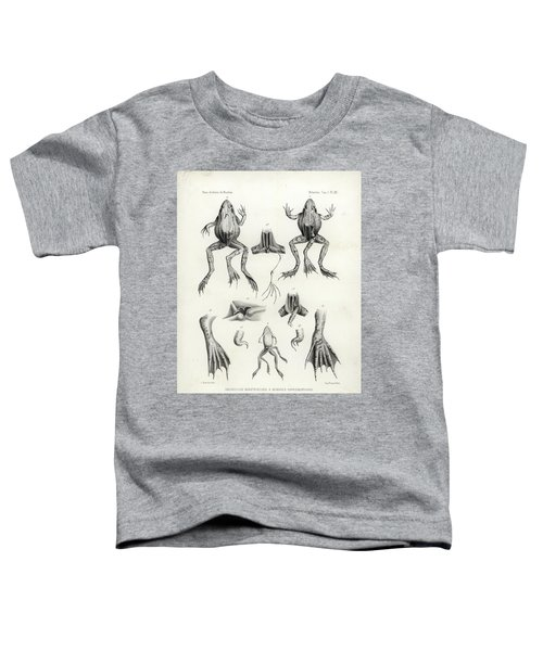 Deformed Frogs - Historic Toddler T-Shirt