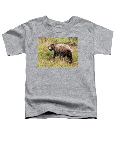 Denali Grizzly Toddler T-Shirt