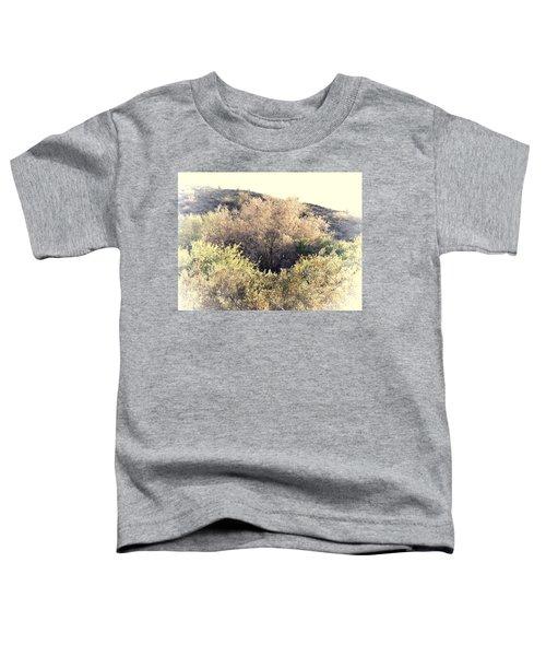 Desert Ironwood Afternoon Toddler T-Shirt