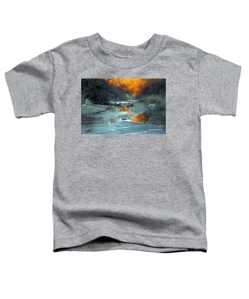 Desert Reflections Toddler T-Shirt