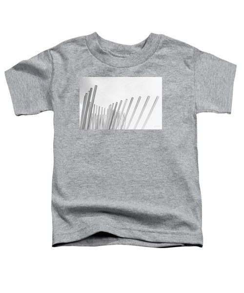 Divided We Stand Toddler T-Shirt
