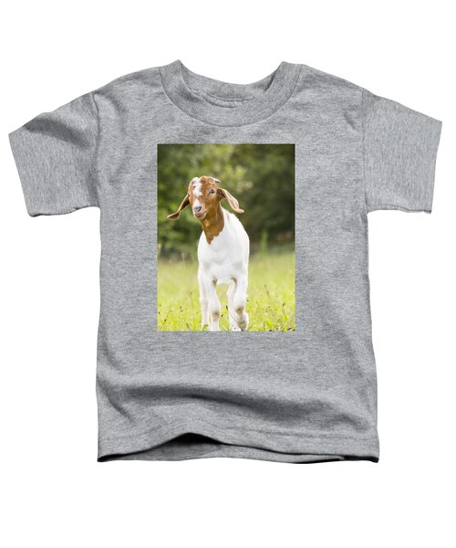 Dougie The Goat Toddler T-Shirt