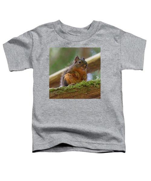 Douglas Squirrel Toddler T-Shirt
