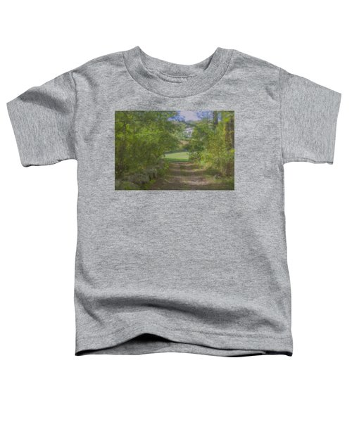Down From The Mansion Toddler T-Shirt