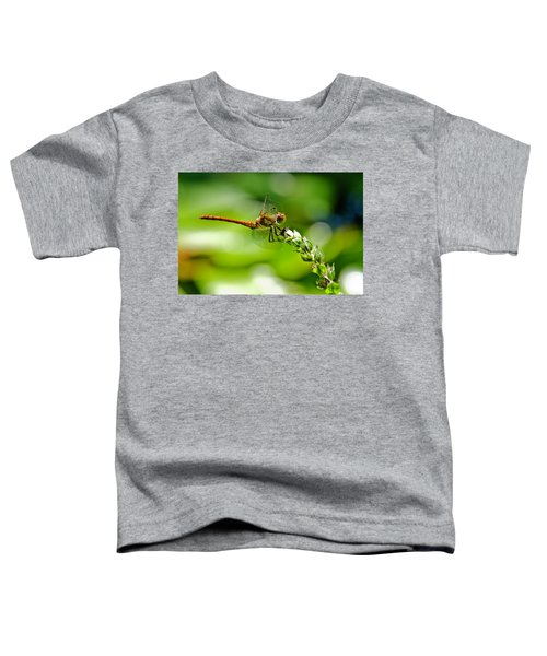 Dragonfly Sitting On Flower Toddler T-Shirt