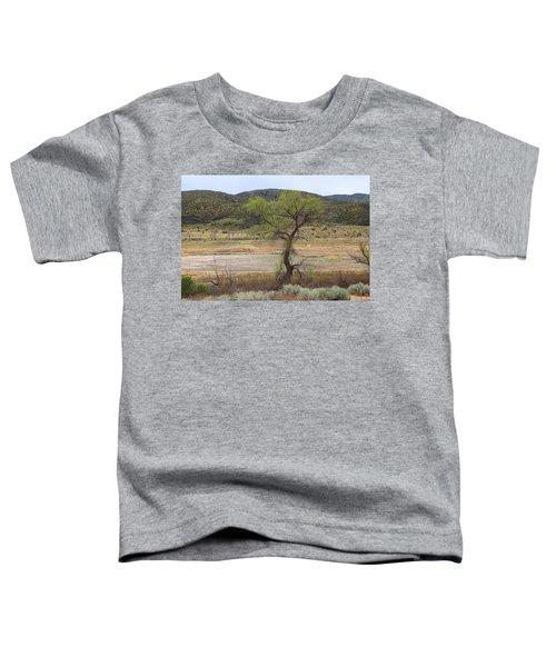 Dried Elizabeth Lake Toddler T-Shirt