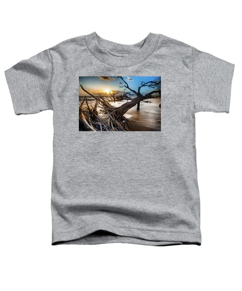 Driftwood Beach 7 Toddler T-Shirt