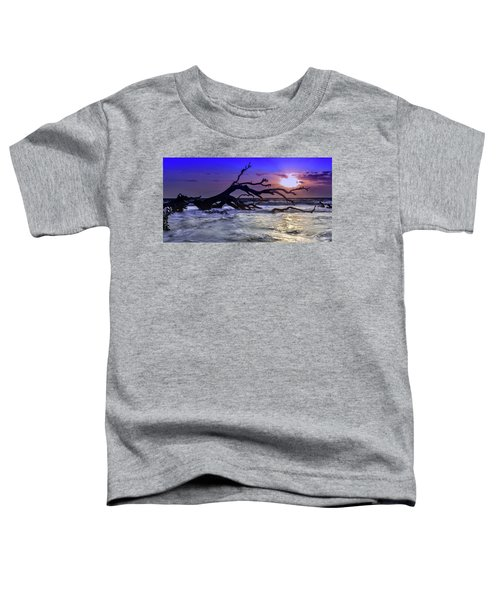 Driftwood Beach 9 Toddler T-Shirt