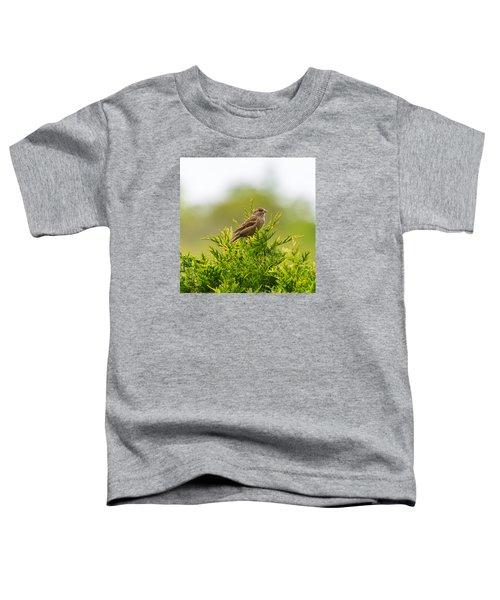 Dunnok Toddler T-Shirt