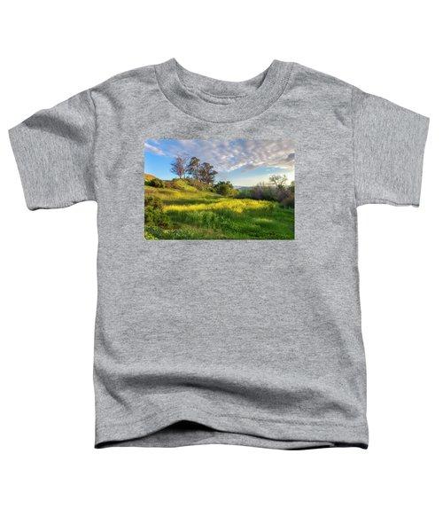 Eagle Grove At Lake Casitas In Ventura County, California Toddler T-Shirt