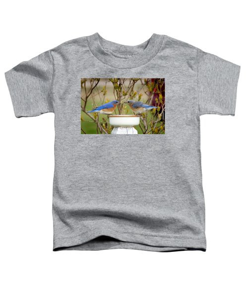 Early Bird Breakfast For Two Toddler T-Shirt by Bill Pevlor
