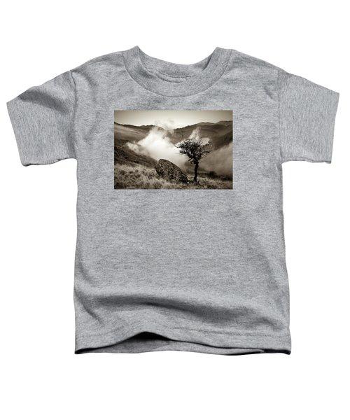 Early Mist, Nant Gwynant Toddler T-Shirt