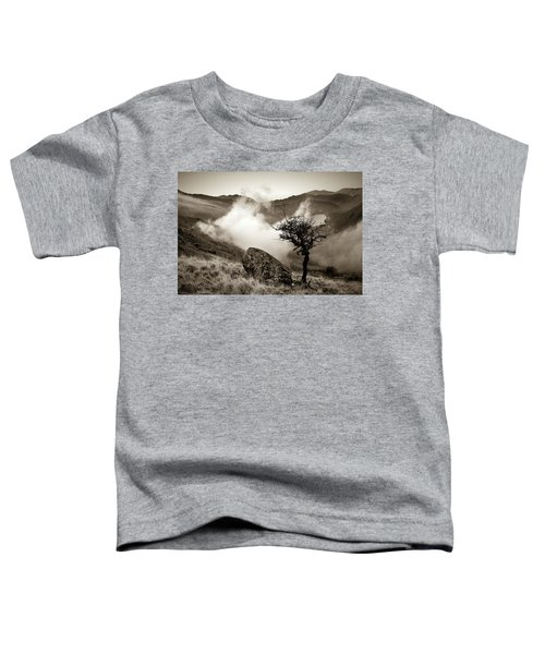 Early Mist, Nant Gwynant Toddler T-Shirt