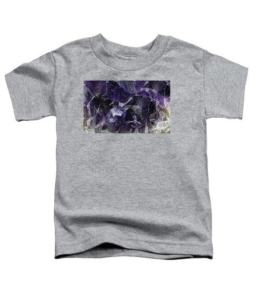 Earth Portrait 001-208 Toddler T-Shirt
