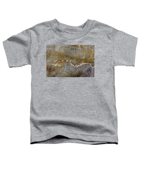 Earth Portrait 000-204 Toddler T-Shirt