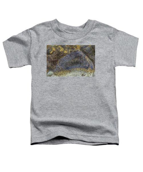 Earth Portrait 001-026 Toddler T-Shirt