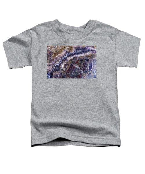Earth Portrait 001-176 Toddler T-Shirt