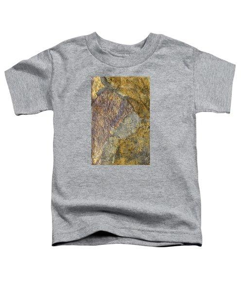 Earth Portrait 011 Toddler T-Shirt
