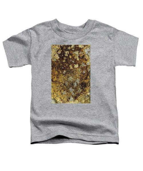 Earth Portrait 015 Toddler T-Shirt