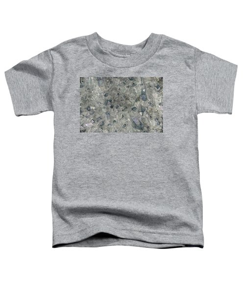 Earth Portrait 158 Toddler T-Shirt