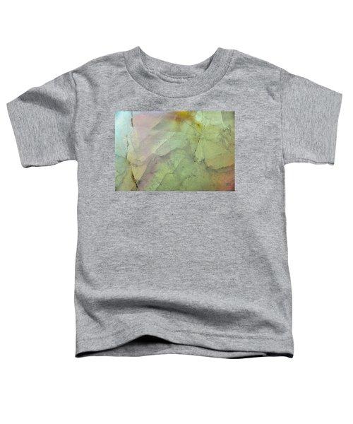 Earth Portrait 284 Toddler T-Shirt
