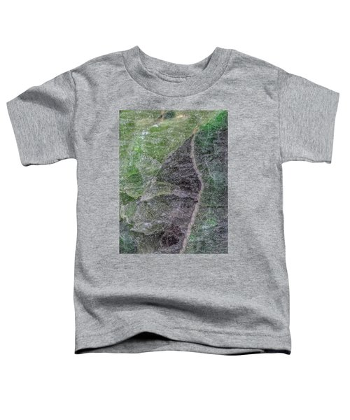 Earth Portrait 294 Toddler T-Shirt