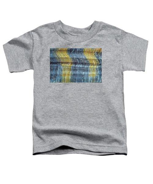 Earth Portrait 295 Toddler T-Shirt