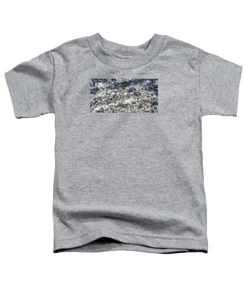 Earth Portrait L5 Toddler T-Shirt
