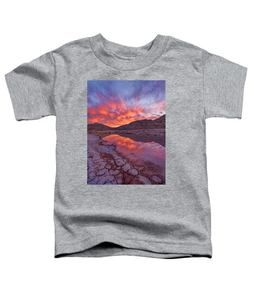 Earth Scales Toddler T-Shirt