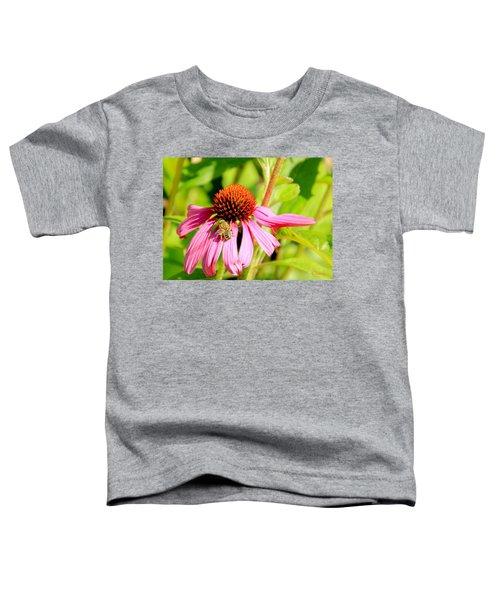 Echinacea Bee Toddler T-Shirt