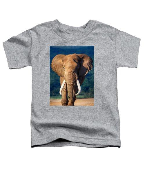 Elephant Approaching Toddler T-Shirt