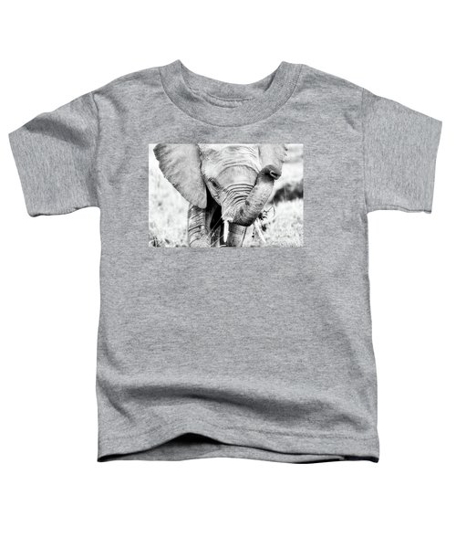 Elephant Portrait In Black And White Toddler T-Shirt
