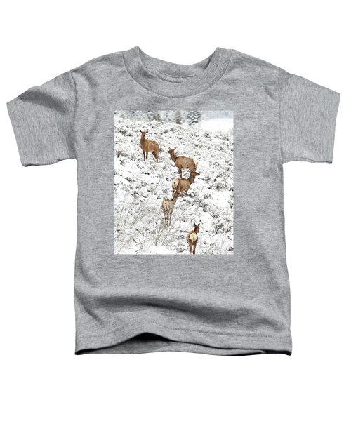 Elk Cows In Snow Toddler T-Shirt