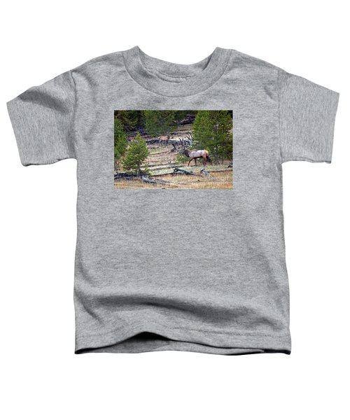 Elk In Yellowstone Toddler T-Shirt