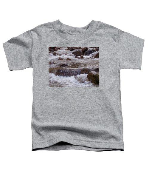 Ellenville Waterfall Toddler T-Shirt