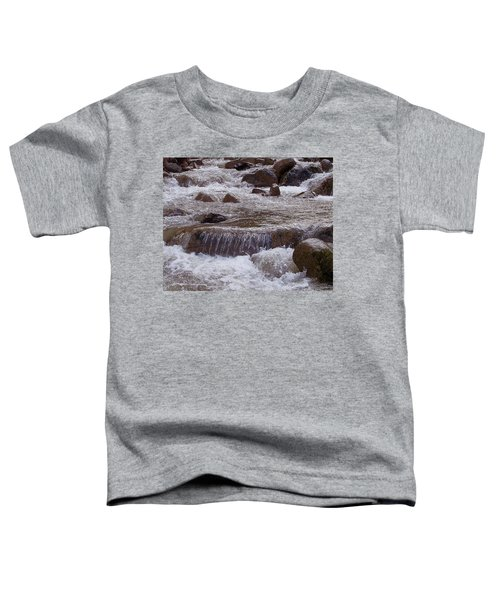 Ellenville Waterfall Toddler T-Shirt