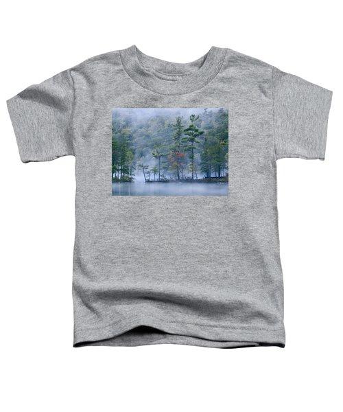 Emerald Lake In Fog Emerald Lake State Toddler T-Shirt