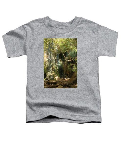Escondido Falls In May Toddler T-Shirt
