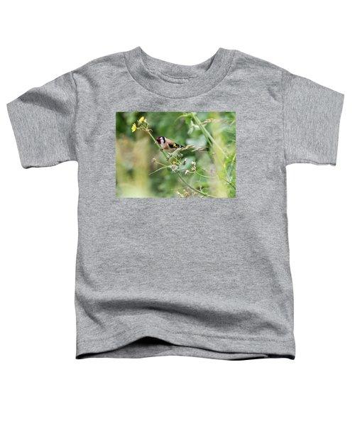 European Goldfinch Perched On Flower Stem B Toddler T-Shirt