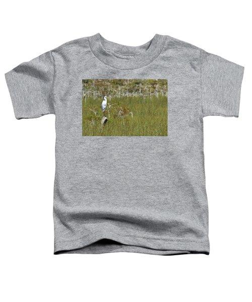 Everglades 451 Toddler T-Shirt
