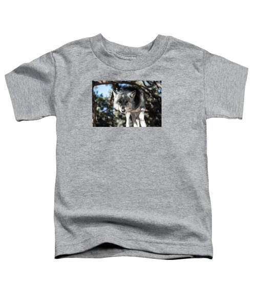 Eyes On The Prize Toddler T-Shirt