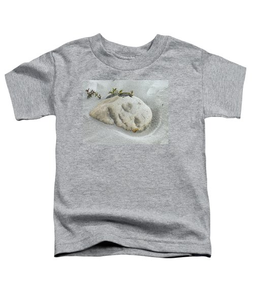 Face In The Sand At Baird Glacier Outwash Toddler T-Shirt